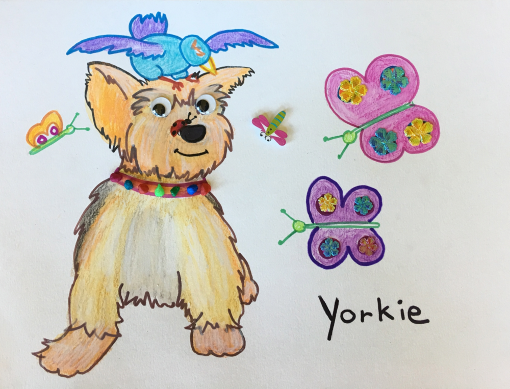 Yorkie Craft