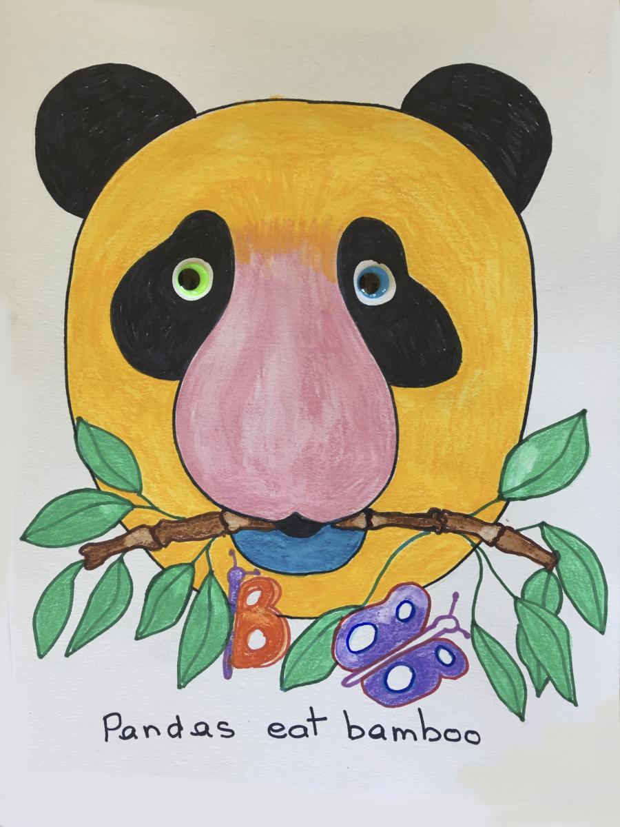 Panda-animal-face