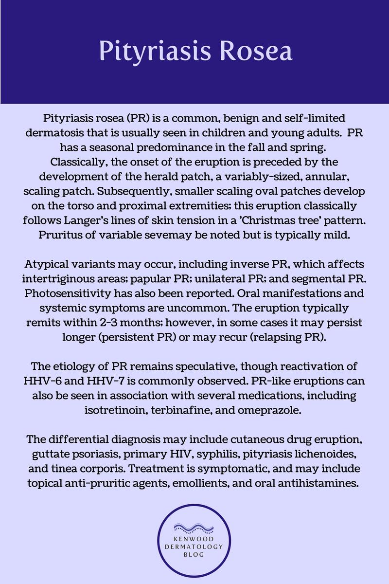 pityriasis rosea 2.png