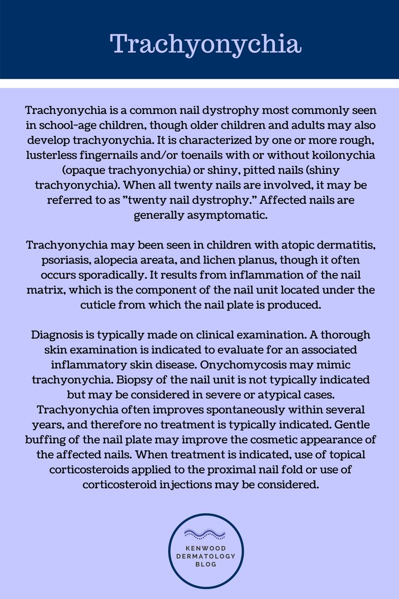trachyonychia 2.jpg