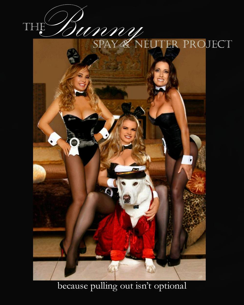 "Director Tylyn and friends modeling for The Bunny Spay & Neuter Project with rescued Akbash ""Mr. Hefner""."