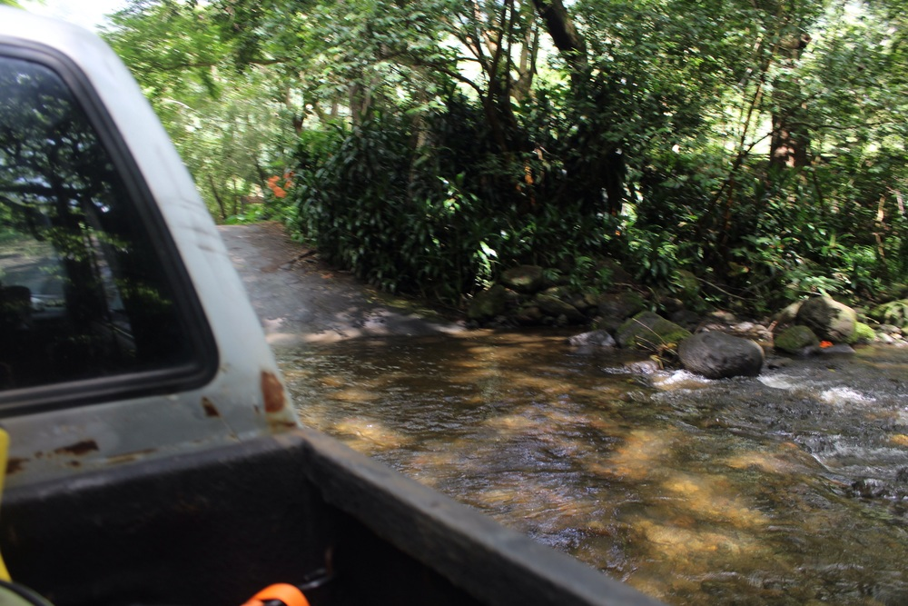 Driving through the water.