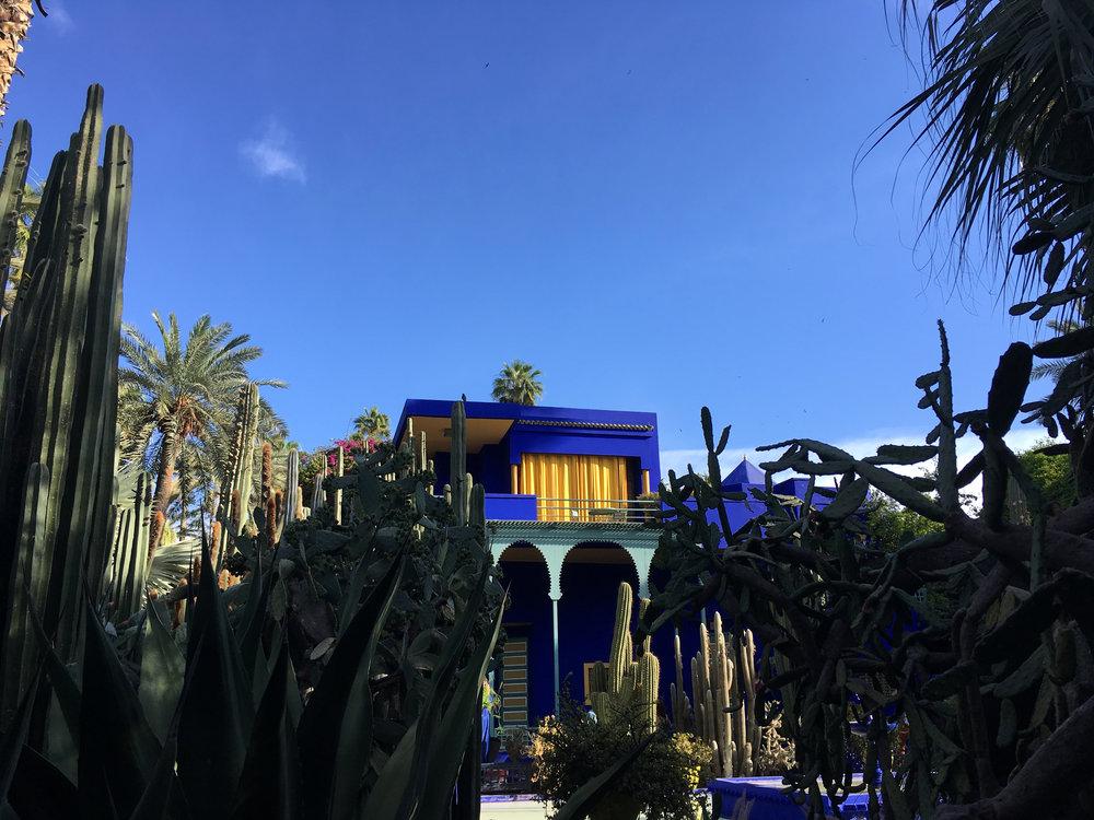 Le Jardin Majorelle. Marrakech, Morocco.