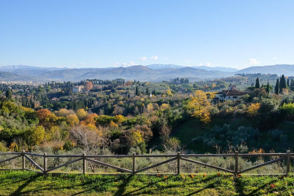 Florence14.jpg