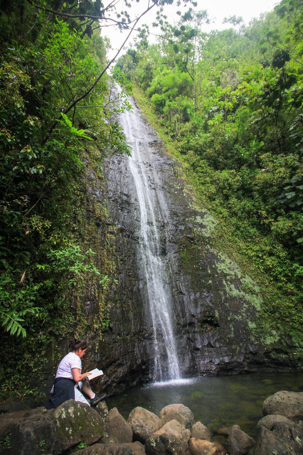 Mom reading her favorite books at Manoa Falls