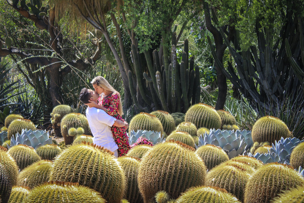 Kissing In a cactus patch