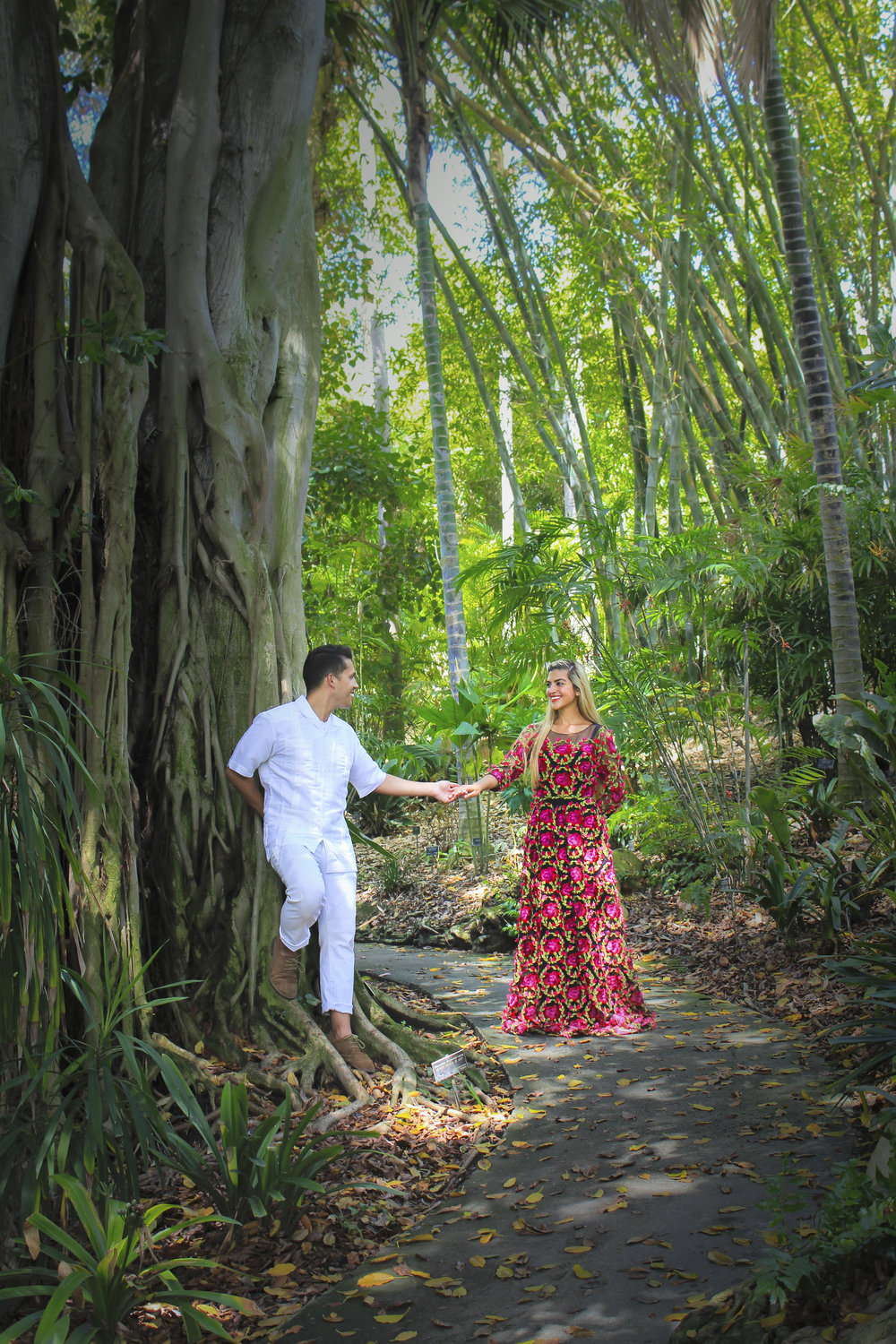 Holding hands underneath a giant tree