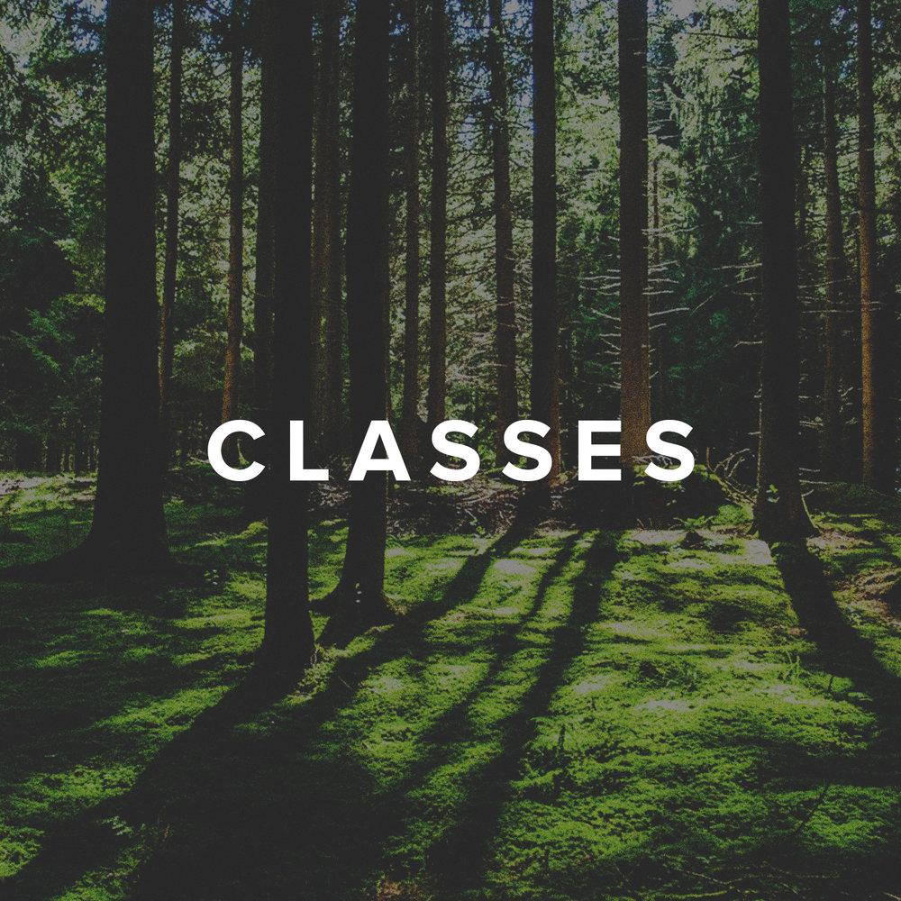 website-classes.jpg