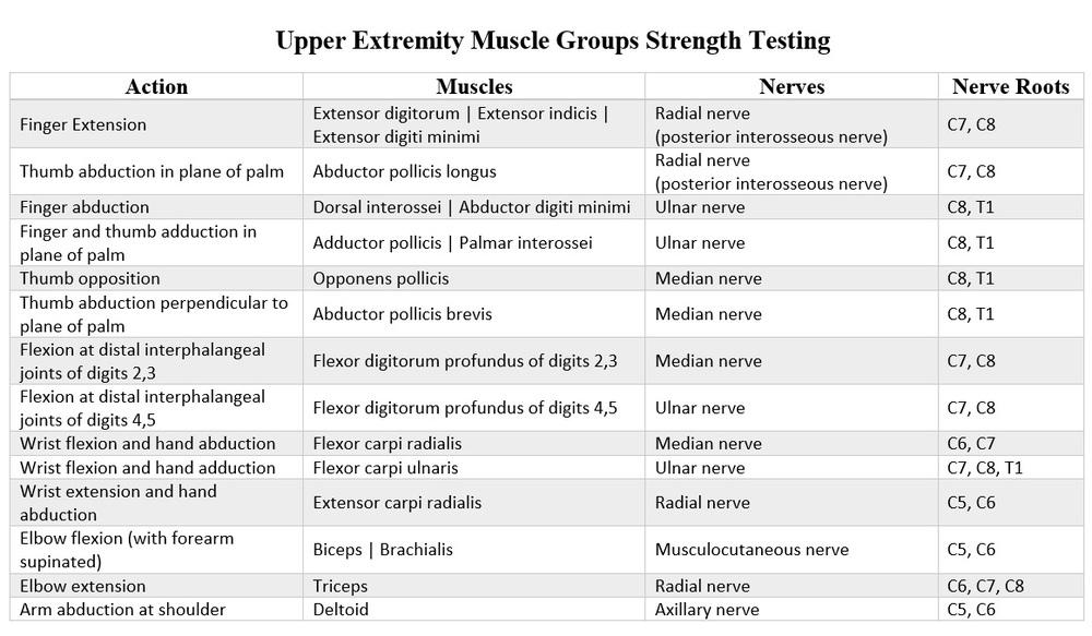 Image Gallery Strength Grading 5 5