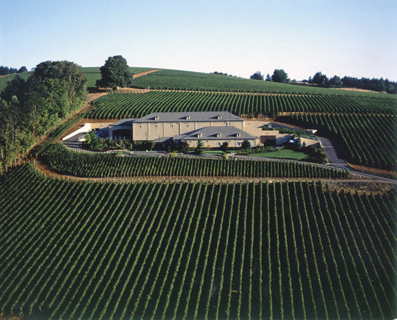 An aerial view of Archery Summit Winery (in Dayton, Oregon). In the only private tasting room blasted out of the mountainside in the early 1990's, a guest will drink a dark, ripe, earthy Pinot 42 feet below ground in a jaw-dropping manmade cave.