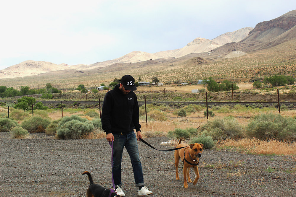 Giving the pups a break somewhere in Nevada of the I-80