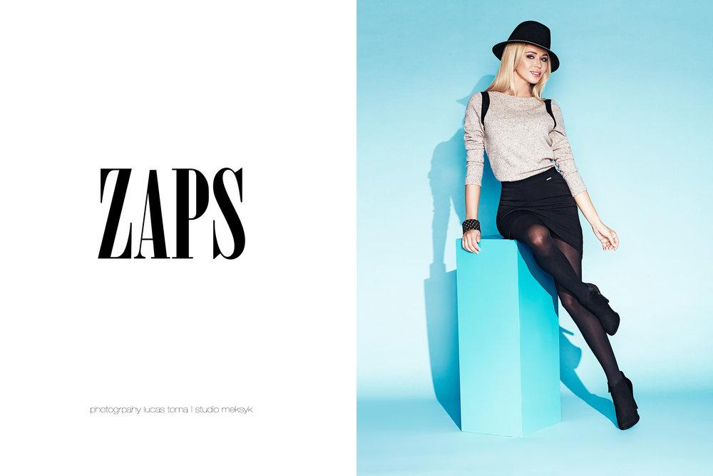 ZAPS_txt2.jpg