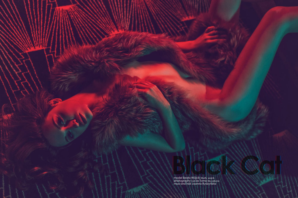 _MG_9022+-+black_cat.jpg