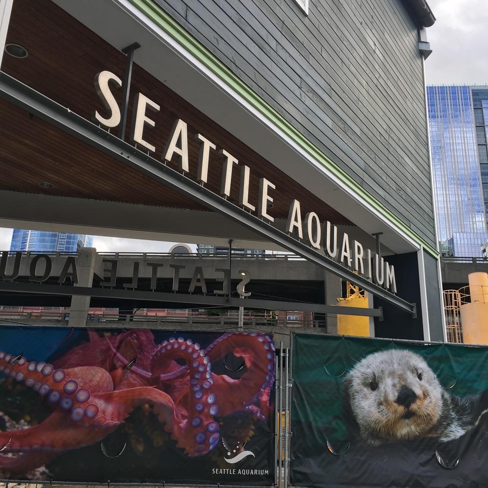 Seattle (23).jpg