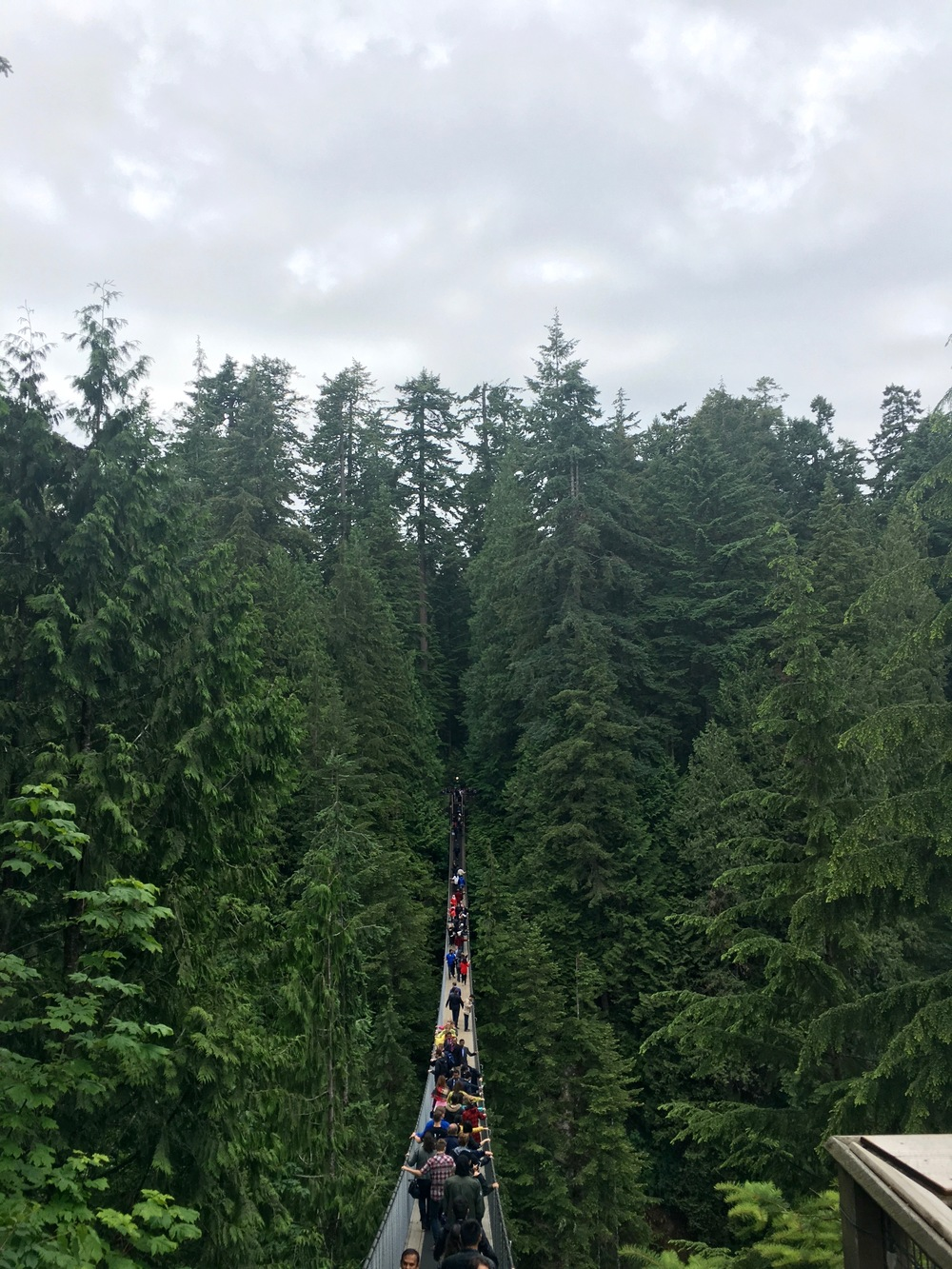 Capilano Suspension Bridge (41).jpg