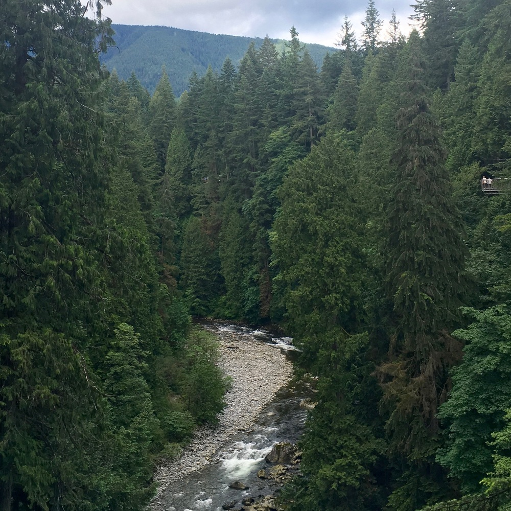 Capilano Suspension Bridge (53).jpg