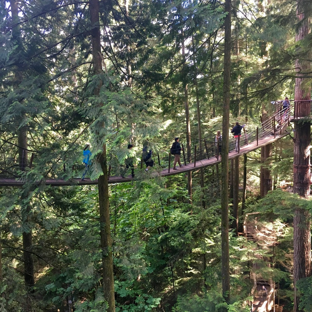 Capilano Suspension Bridge (81).jpg
