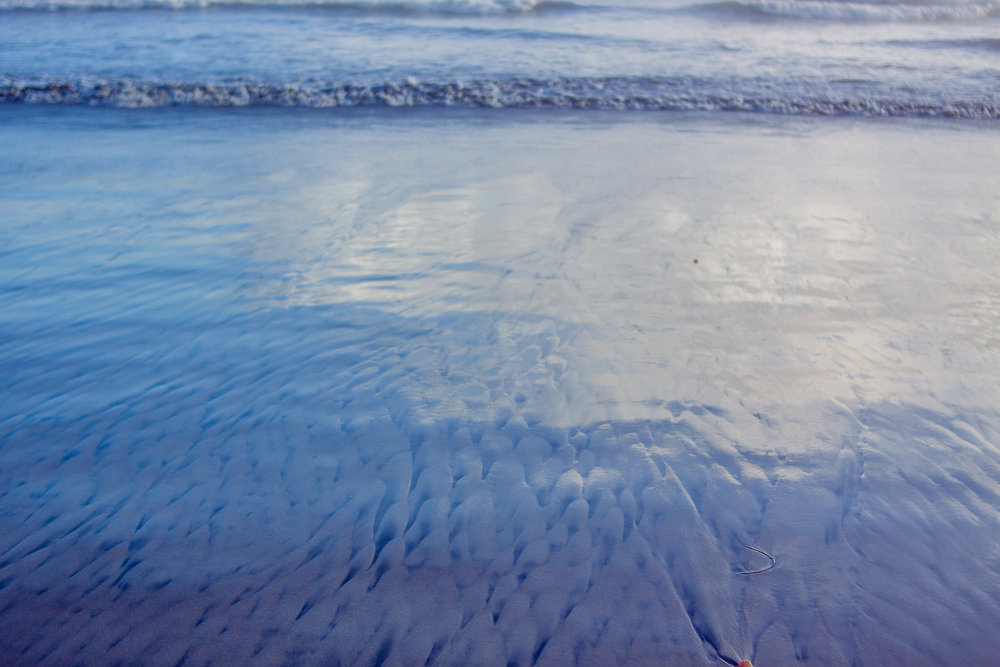 2017_02_BeachDay-134.jpg