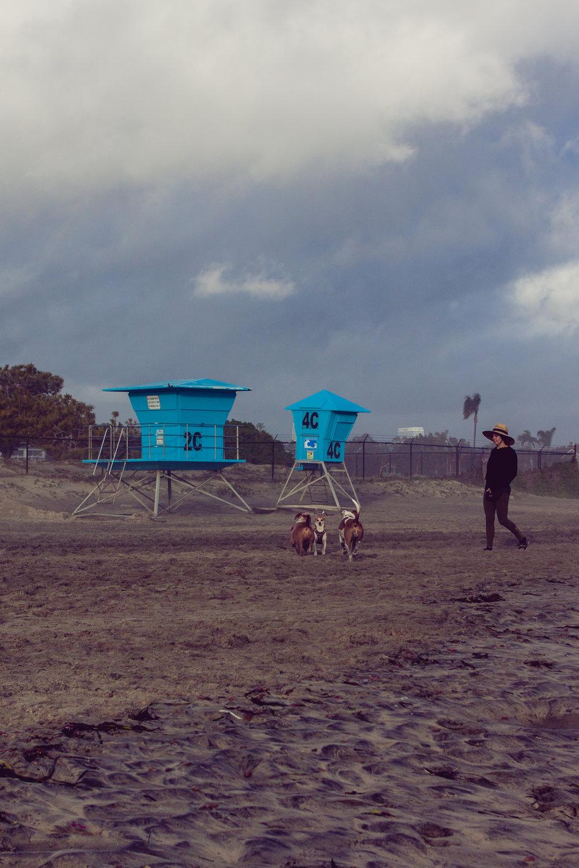 2017_02_BeachDay-154.jpg
