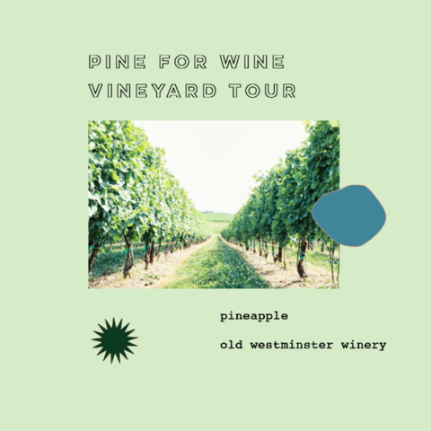 tour + tasting at Old Westminster Winery & Vineyard