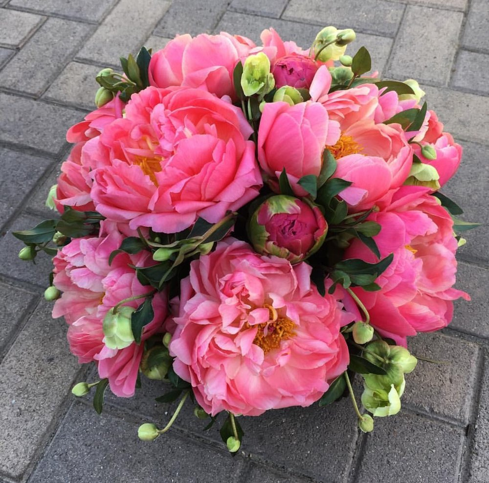 24. Pink Peonies with Hellabore