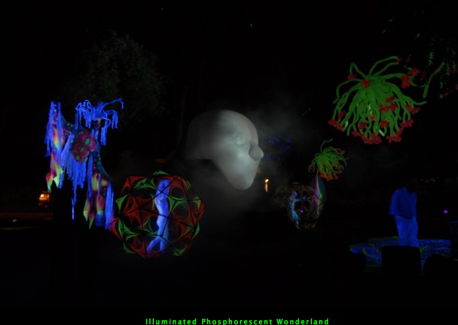 Illuminated Phosphorescent Wonderland (1).png