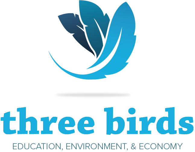 Three Birds Logo/Branding