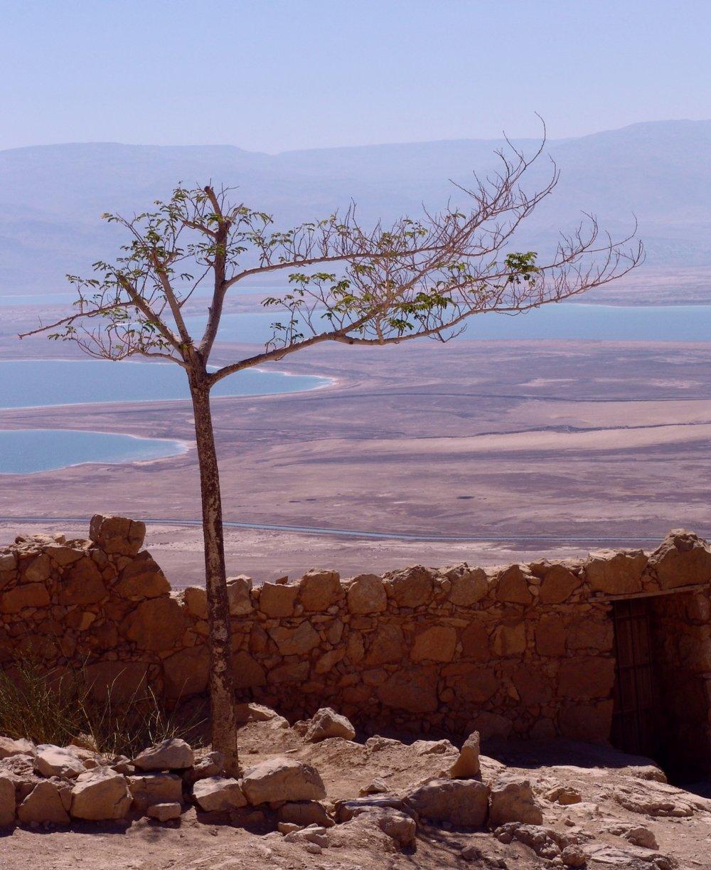dead_sea_israel_landscape_salt_travel_east_mineral_coast-1011297.jpg!d.jpeg