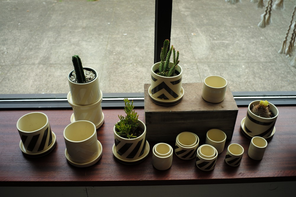 Cups and Cacti, Portland, OR 2016