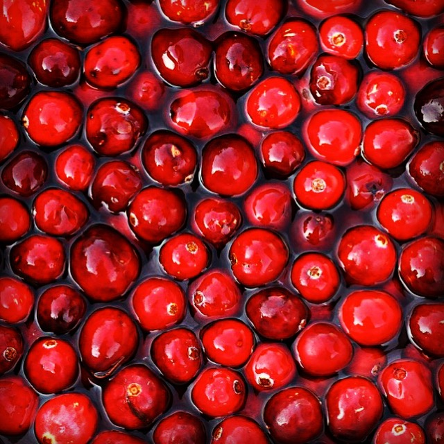 Cranberry seed oil aids in the skin's absorption of essential fatty acids for ultimate regeneration.