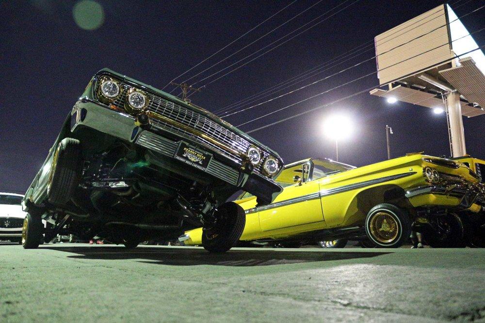 impalas.jpg