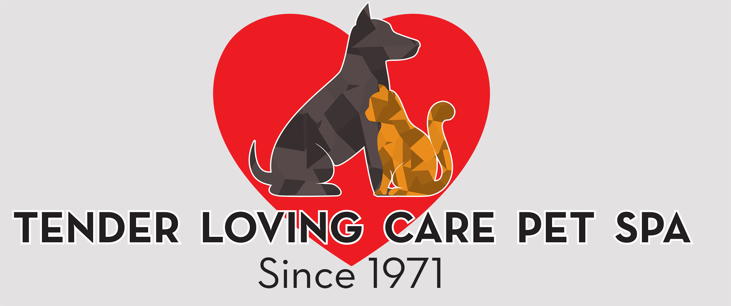 Tender Loving Care Pet Spa