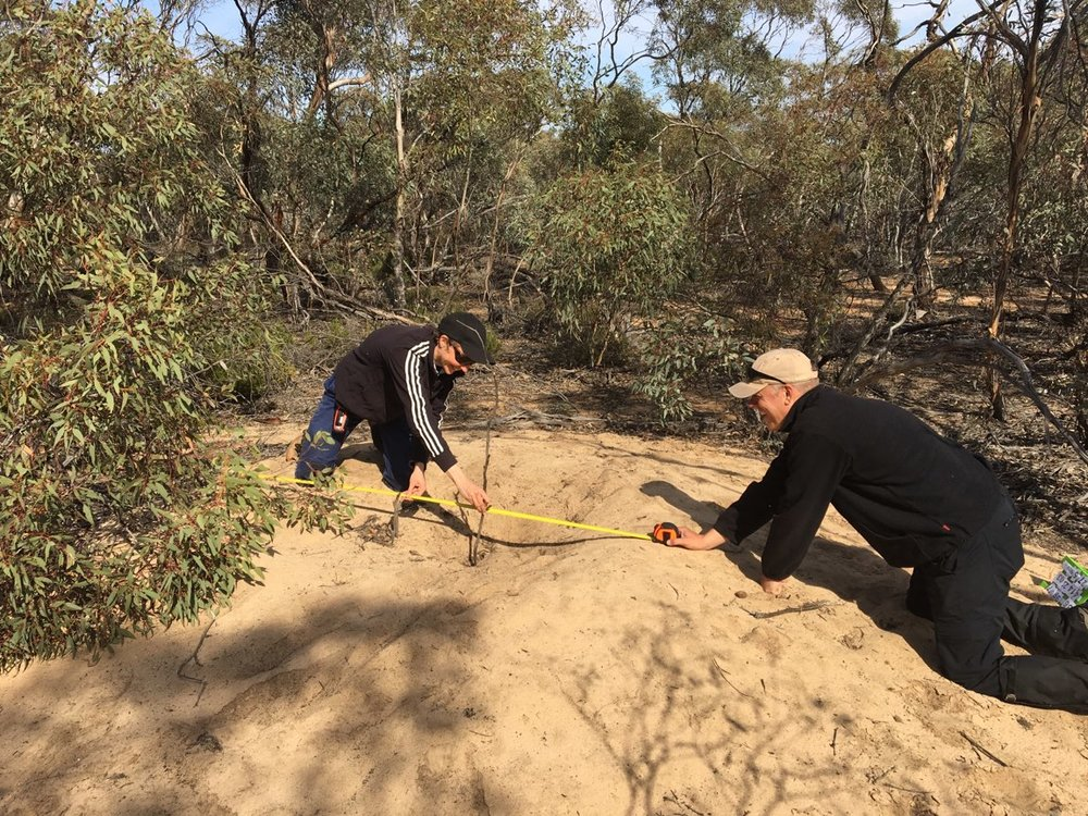 Measuring the depth and rim diameter of the mound. Photo: Tanya Loos.
