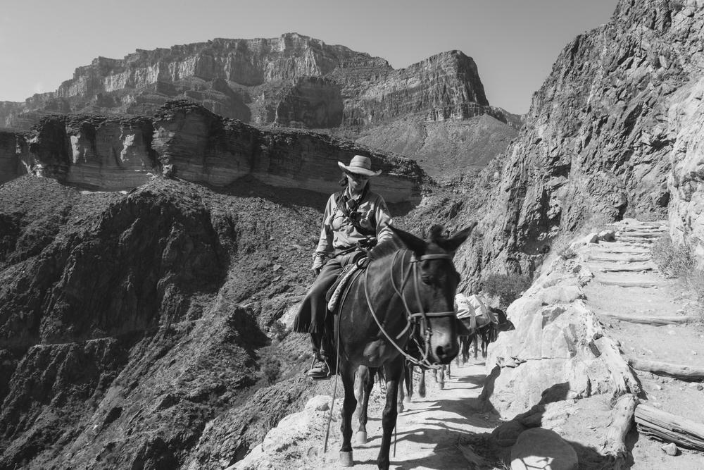 Bright Angel Trail - Grand Canyon