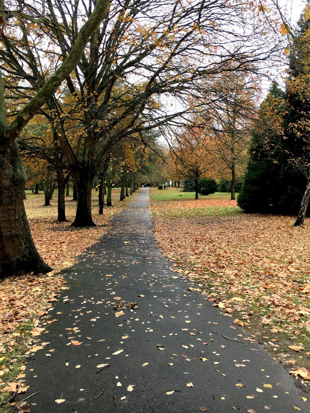 Step_13_Beckenham_Place_Park.jpg
