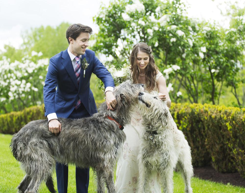 web-image-wedding--2.jpg