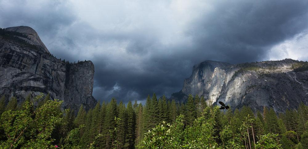 Yosemite-Blog Post-2.jpg