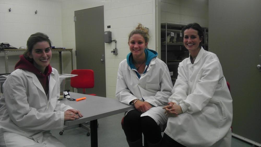 Sarah, Nicole & Brenna. DCP team 2013