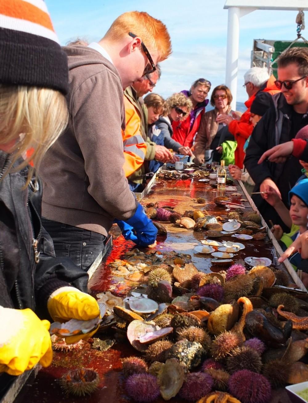 Iceland-Islande-Stykkisholmur-sushi-tour-noix-saint-jacques-e1444904760766.jpg