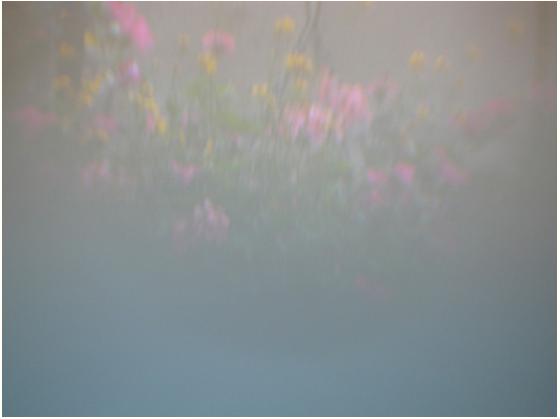 Screen shot 2012-04-03 at 15.12.39.png