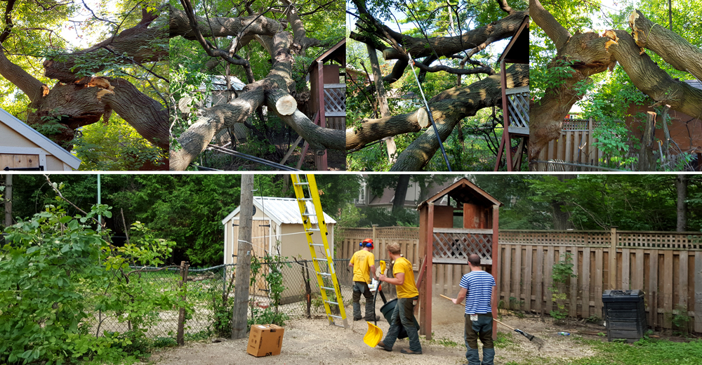Heritage Tree Care Inc. professional arborists cleaning after a storm