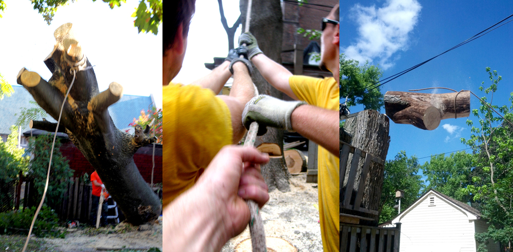 Toronto tree removal in a backyard in Toronto