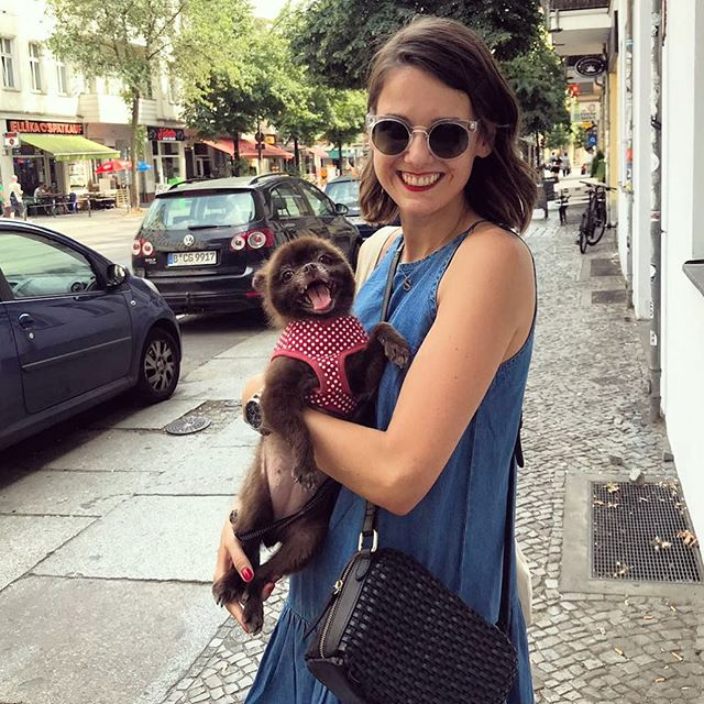 @nananmischa left me alone with this cuddly toy for only 5 minutes and I couldn't help but give her a squeeze 😍  #berlin #dogsofinstagram