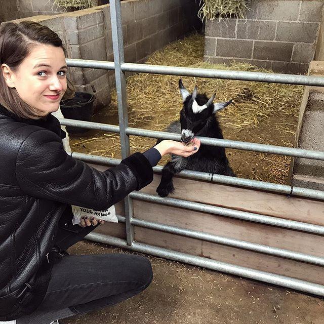 The goat whisperer 🐐