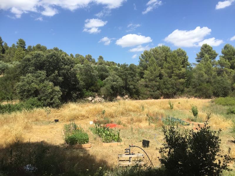 The veggie garden at Mas del Encanto