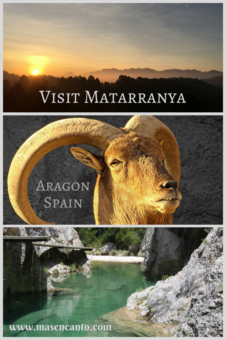 Let us help you plan your holiday in Matarranya! From self-catering and free as a bird to all-inclusive holidays, we make sure you have the vacation you deserve. At Mas del Encanto, our tiny farm and rural retreat in Aragon, Spain.