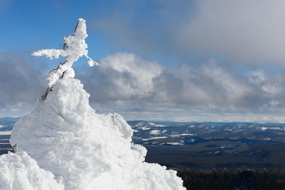 Frozen-019.jpg