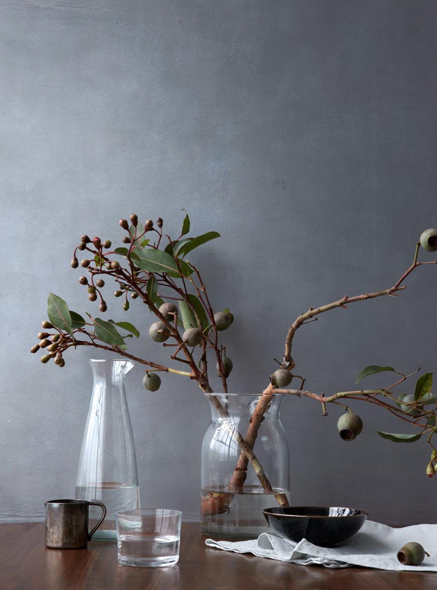 KateEucalyptus.jpg