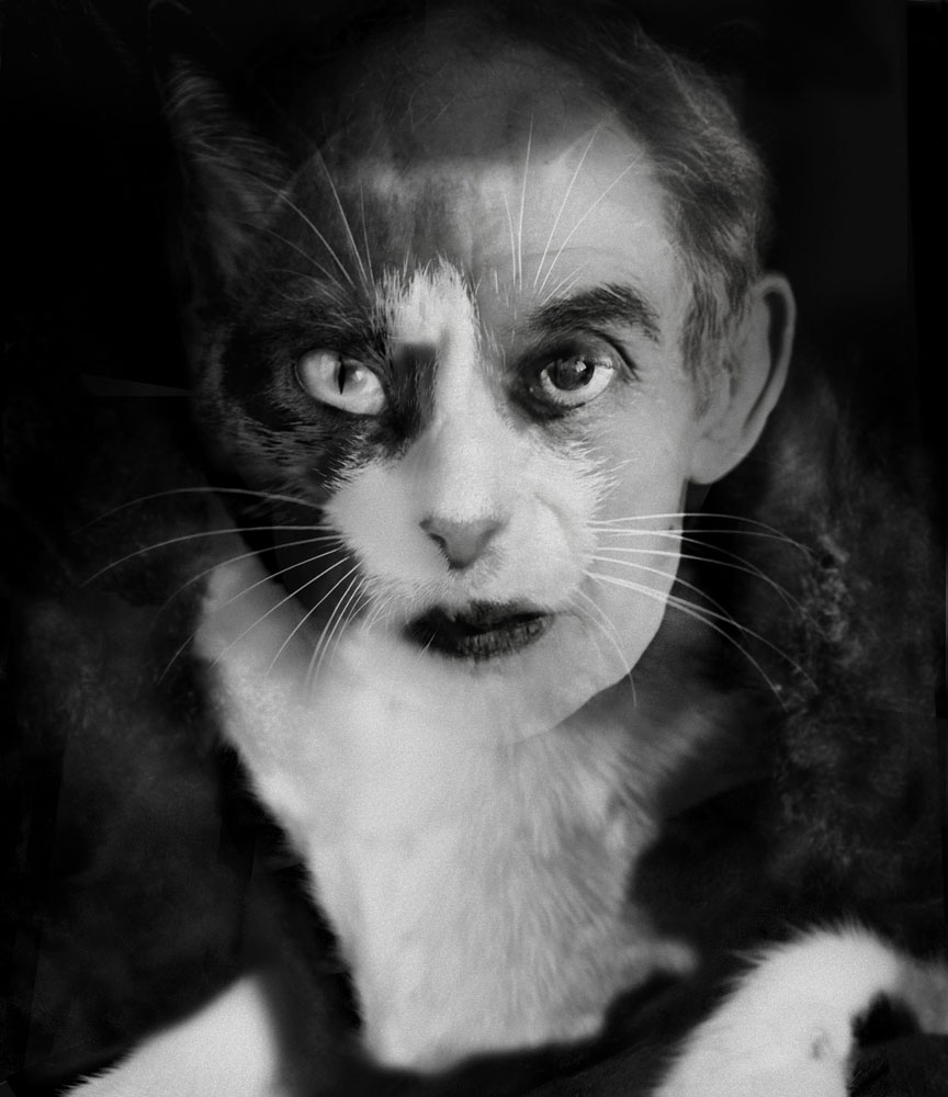 Copy of « Looking for the Masters in Ricardo's Golden Shoes #25 (Tribute to Wanda WULZ, Io + Gatto, 1932) » by Catherine Balet