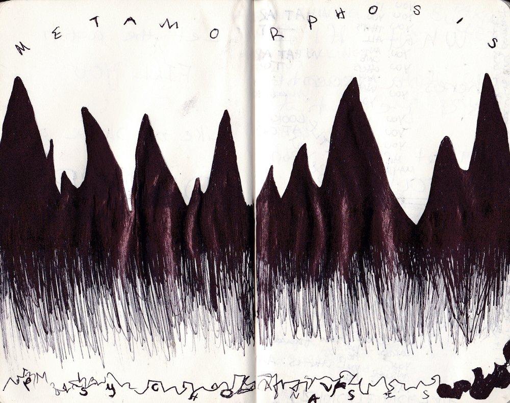 Metamorphosis/Psychoanalysis